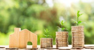 investir en immobilier colocation
