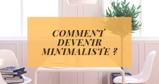 https://gerer-mon-budget.fr/wp-content/uploads/2019/05/COMMENT-DEVENIR-MINIMALISTE